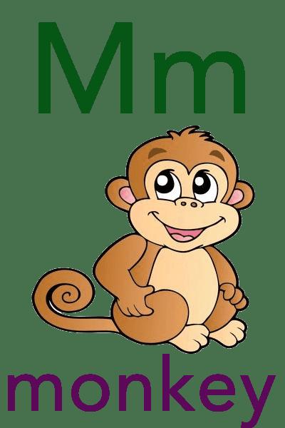 Baby ABC Flashcard - M for monkey