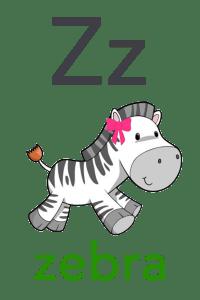Baby ABC Flashcard - Z for zebra