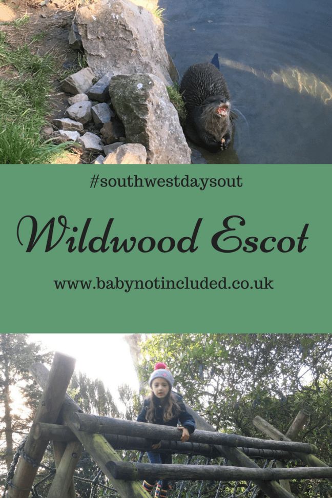 Wildwood Escot