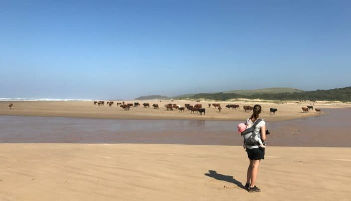 traveling with children, travel blog, parenting, south africa, with kids