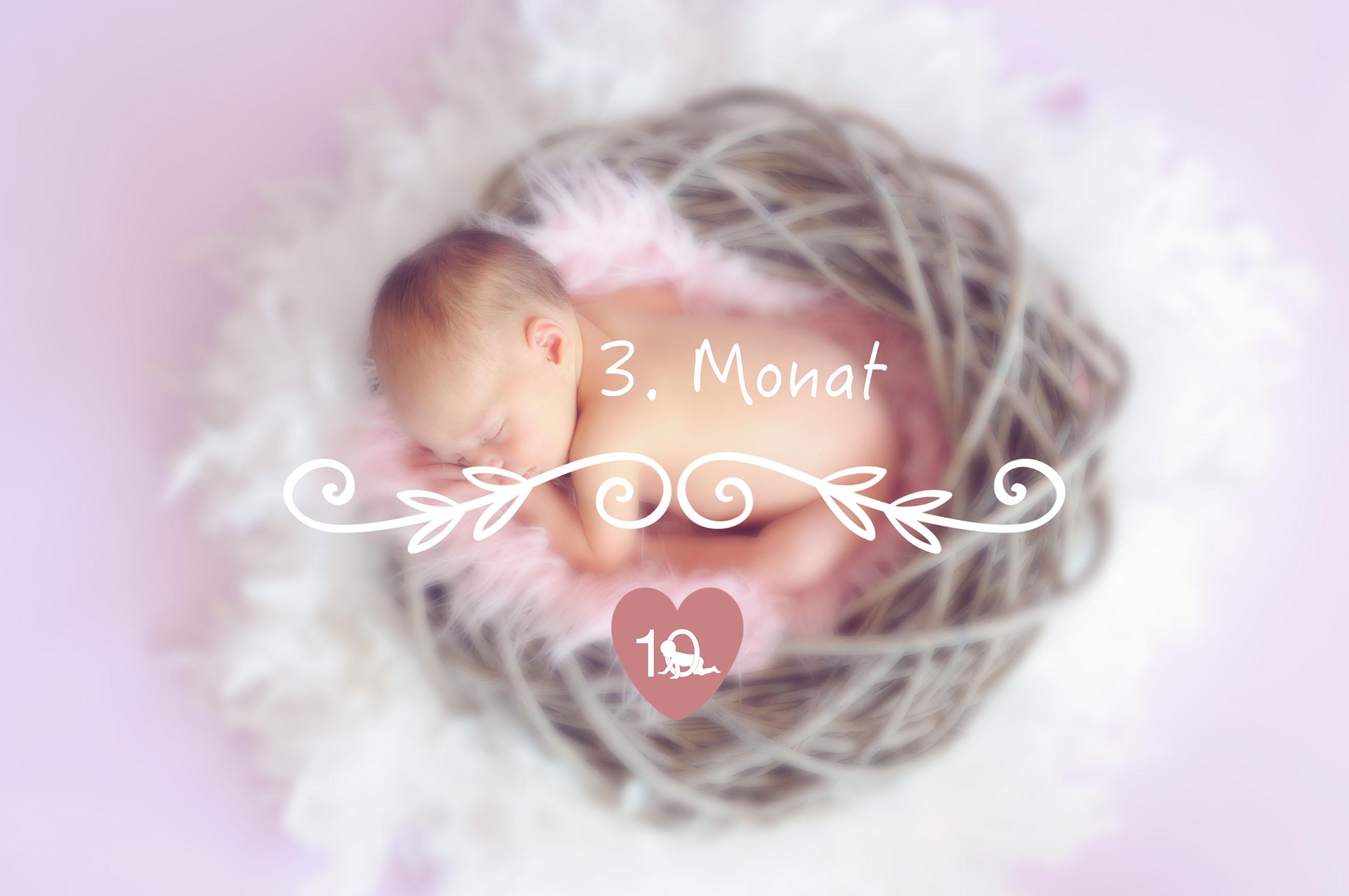 schwangerschaft 3 monat schwangerschaft 2 monat 1 bis 3. Black Bedroom Furniture Sets. Home Design Ideas
