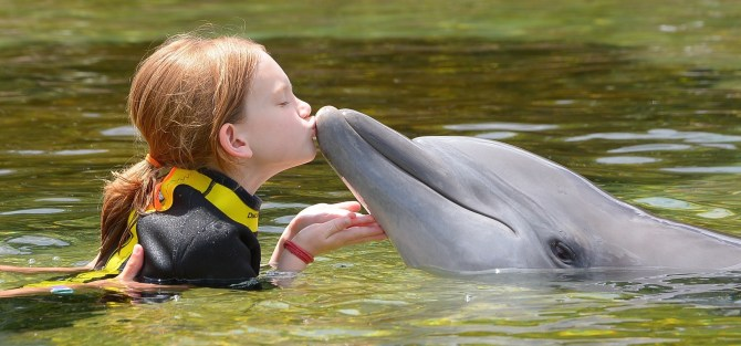 Sea World is making the world a better place. Yes, I said that.