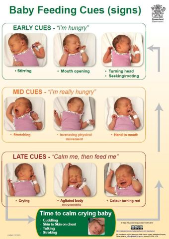Breastfeeding cues. Make sure you feed your baby when you see early cues.