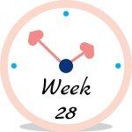 Zwangerschap week 28