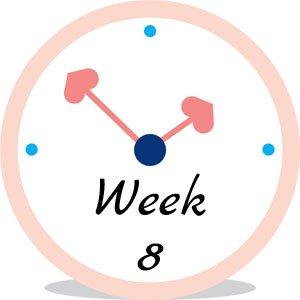Zwangerschap week 8