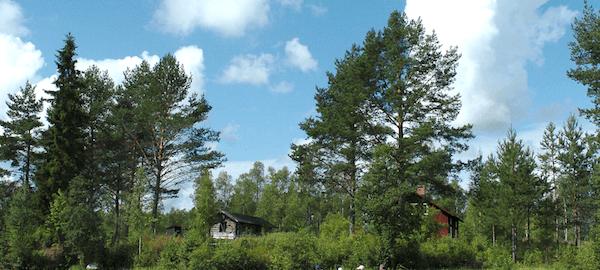 Suecia en familia