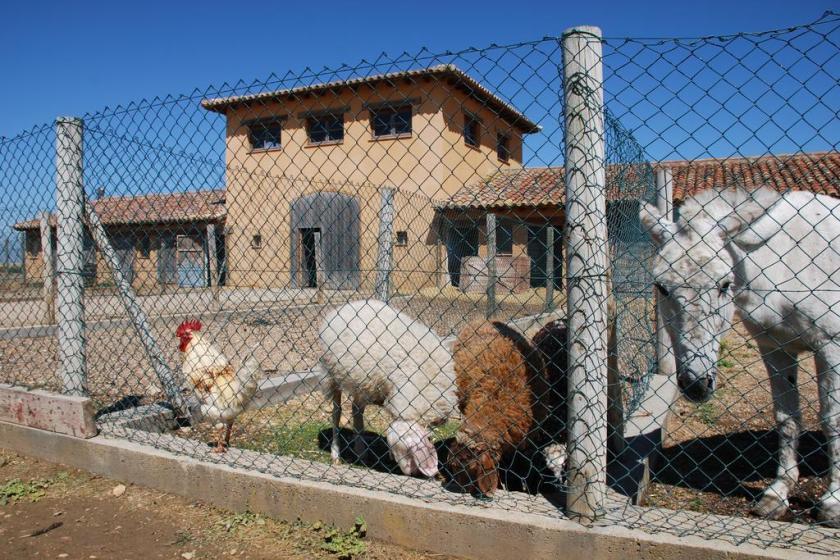 granja escuela valladolid