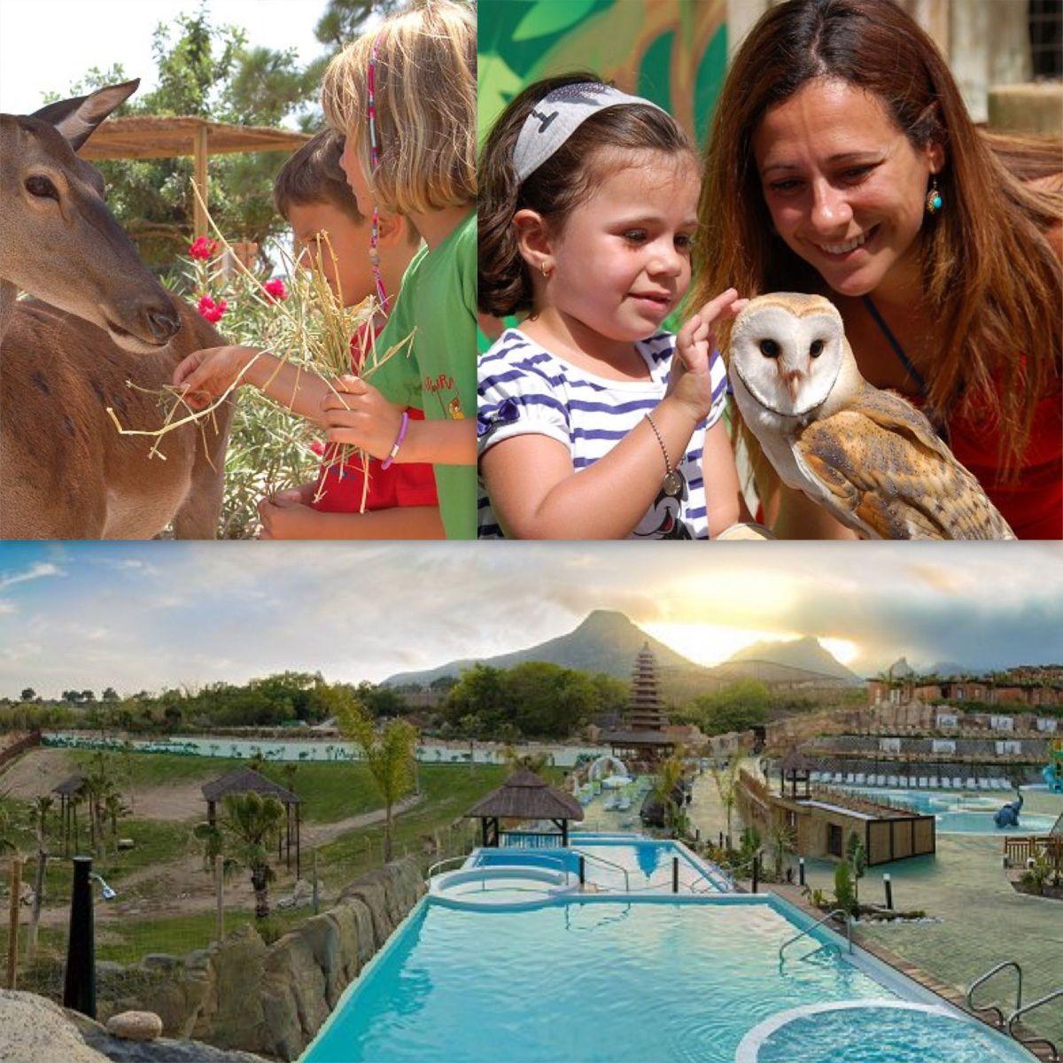 Un hotel entre animales y parque acuático