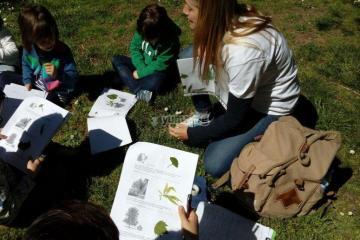 actividades de naturaleza para niños