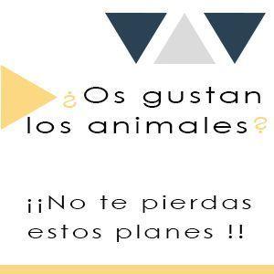 lugares para ir con niños con animales