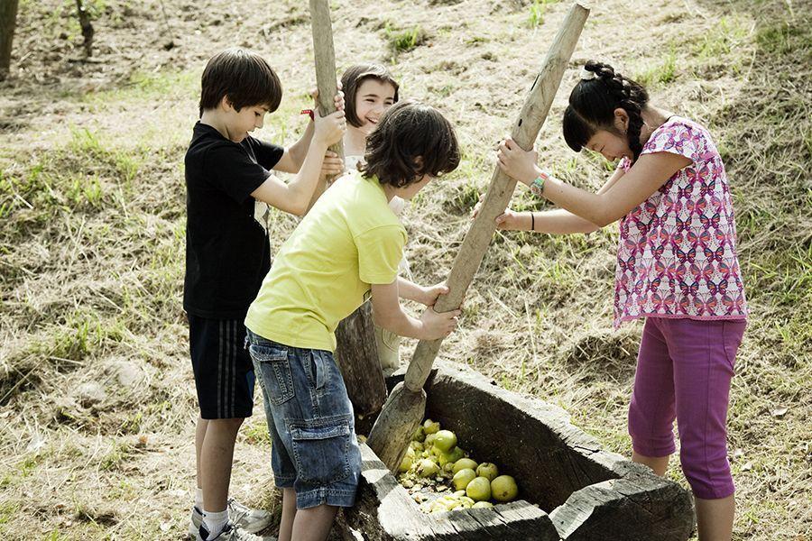 Actividades para niños en el Museo de la Sidra