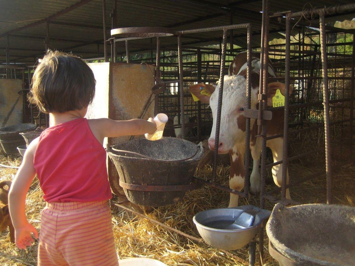 Casa rural con mini granja: La Franja