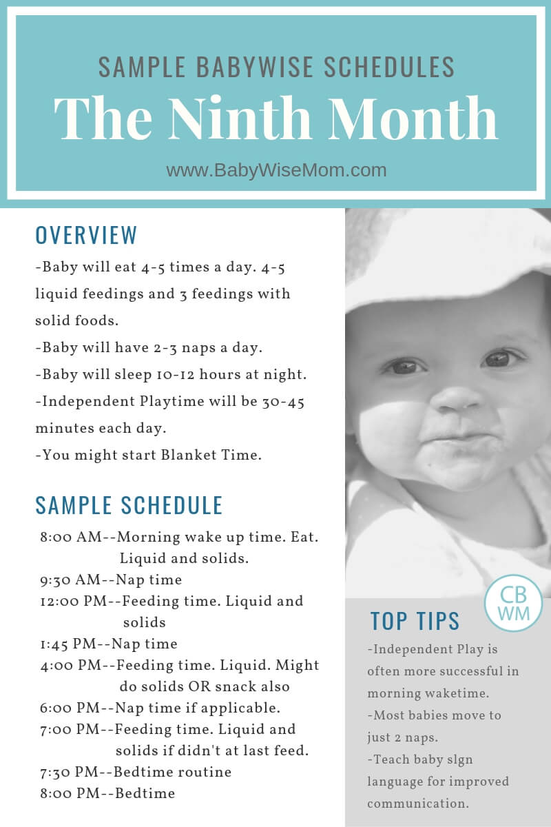 Schedule For 8 Month Old : schedule, month, Babywise, Sample, Schedules:, Ninth, Month