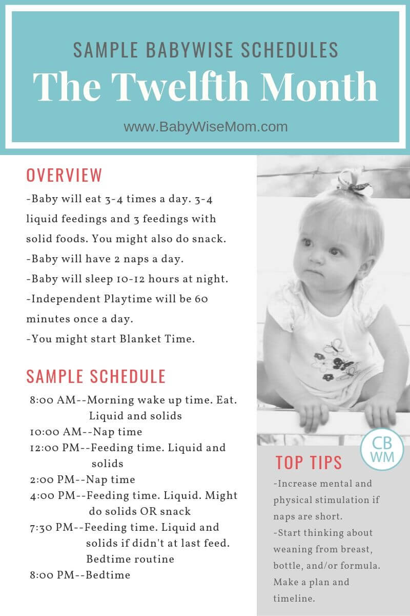 12 Hours By 12 Weeks Summary : hours, weeks, summary, Babywise, Sample, Schedules:, Twelfth, Month