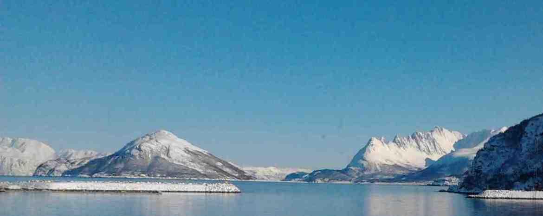 Bacalao Noruego Pescado