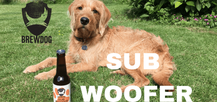 Brewdog Subwoofer Review