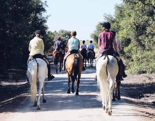 Bacchus Travel Andalusia Riding