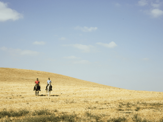 Bacchus Travel Andalusia Riding Field
