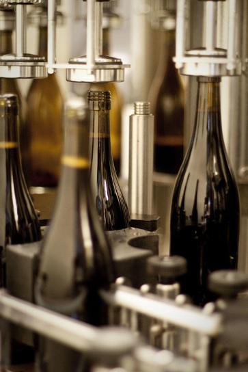 Bottling-wine-5