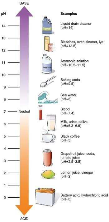 What is the best TDS value for drinking water? - Home ...