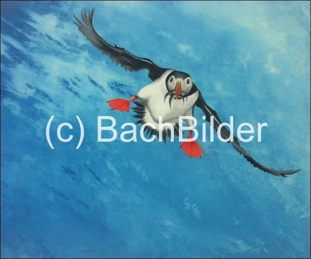 Vogel01_prot