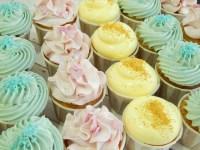 Mini cupcakes 26 Cupcakes