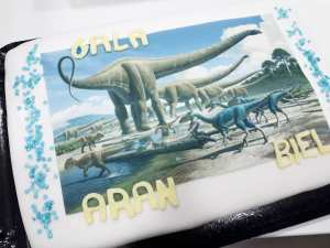 Pastel Dinosaurios 14