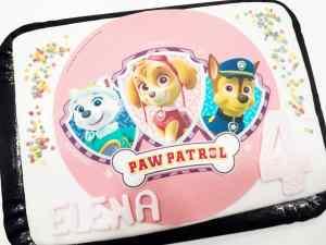 Pastel Patrulla Canina Pink 16