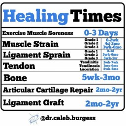 Healing Times for Different Tissues