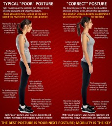 The best posture is your next posture