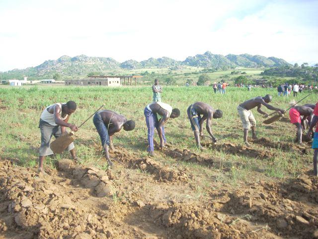 A Farming Tradition