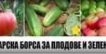 българска борса