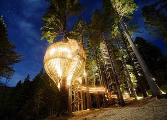 redwoods-treehouse