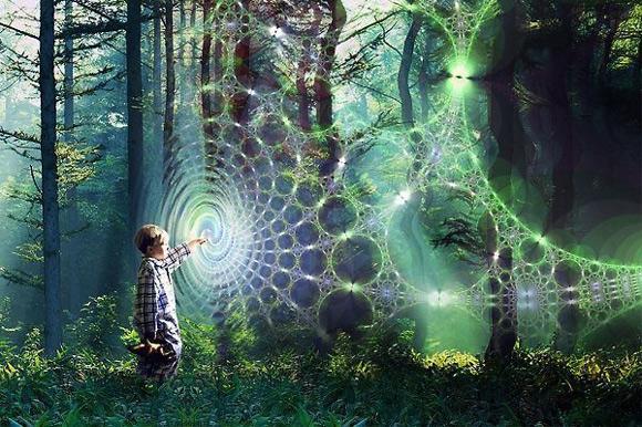 Forest-kid