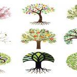 Дървото което привлича очите ви, разкрива вашата доминираща личностна черта
