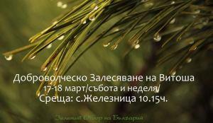 Доброволческо Горско Залесяване на Витоша - Зеленият Отбор
