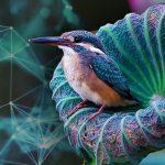 Биомимикрия или как да създадем по-устойчив свят учейки се от природата