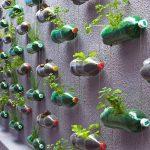 Recycle, Reduce, REUSE: Да използваме нещата повторно!