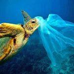 Нека спрем пластмасата задушаваща океаните