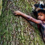 Бразилия: Прекратете апокалипсиса в Амазония!