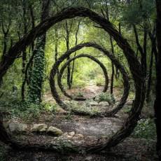 Артист прекара година в гората създавайки сюрреалистични скулптури