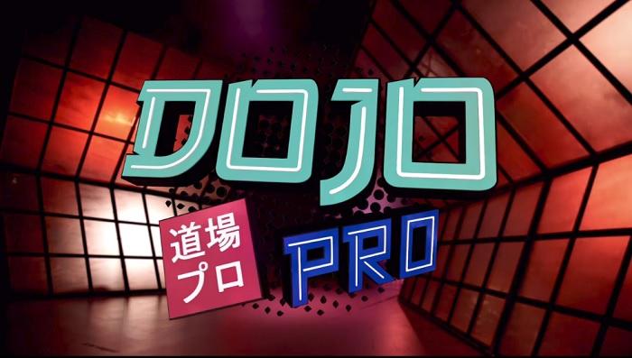 Dojo Pro – S01 E01 – Kevin Ku vs. Kerry Awful
