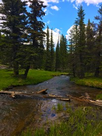 The first crossing of the Little Colorado
