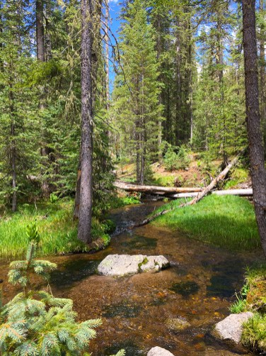 One of several stream crossings on the way to the top