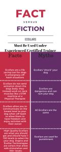 Facts vs Myths of Ecollar Dog Training