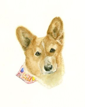 The final watercolor of Callie. Dr. Jean's Welsh Corgi