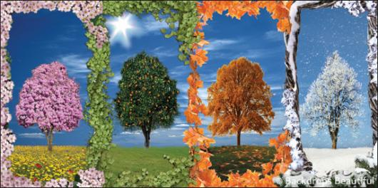 Create Your Own Quote Wallpaper Backdrops Beautiful Hand Painted Scenic Backdrop Rentals