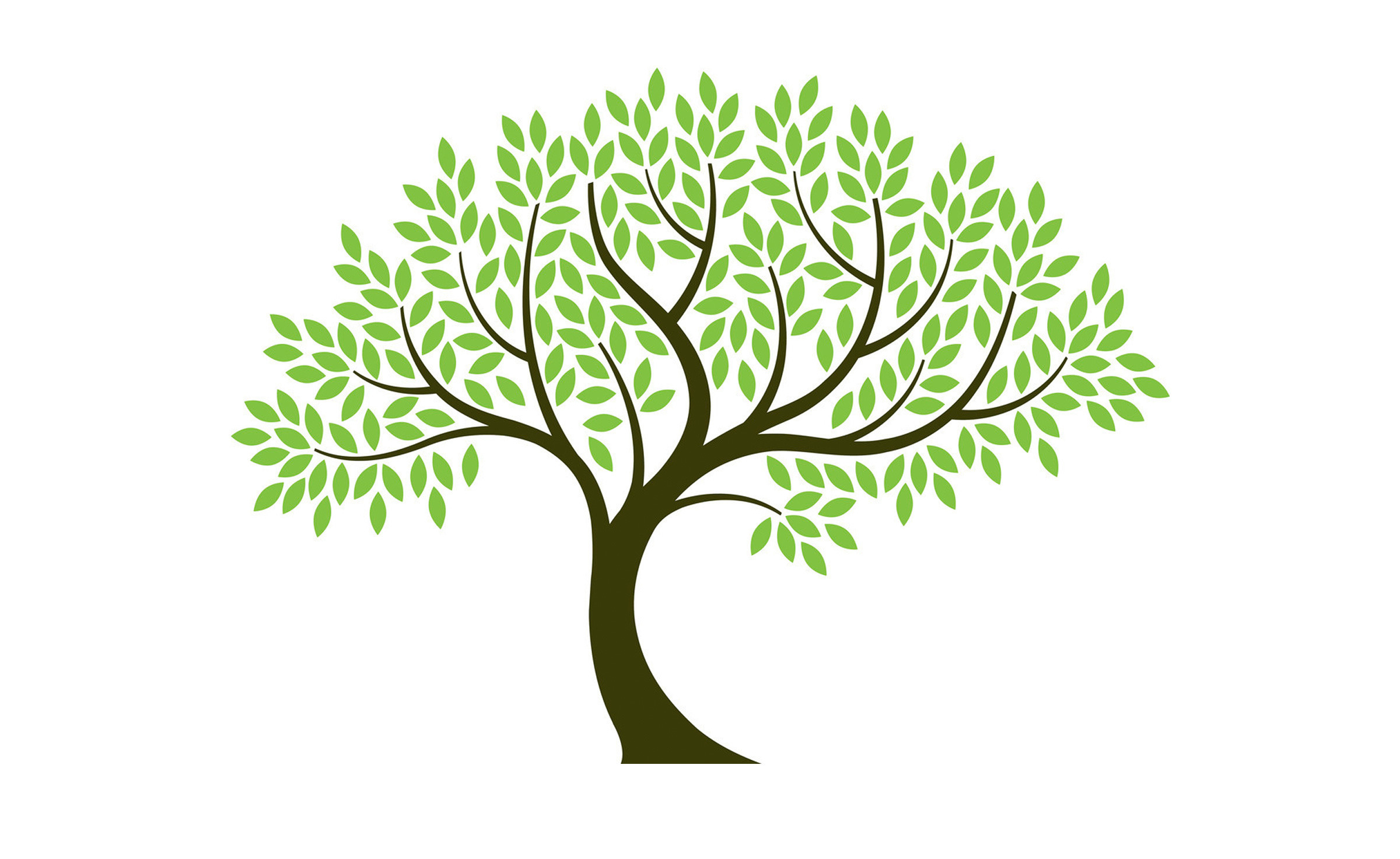 [35+] Skizze Baum Ohne Blätter