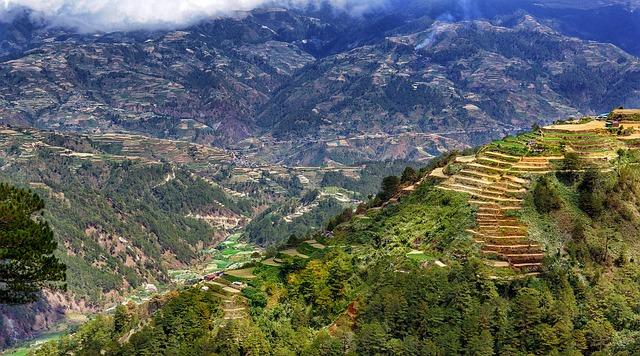 Cordillera Philippines Rice Terraces