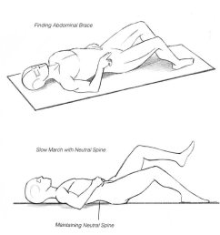 diagram of core bracing exercise to help maintain neutral spine [ 900 x 900 Pixel ]